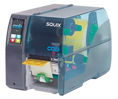 SQUIX 4, 剝離版(P 版)